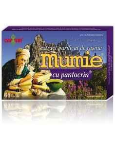 Mumie Extract Purificat de Rasina cu Pantocrin 60 tablete Damar