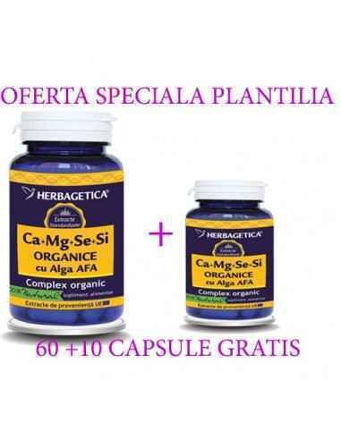Ca+Mg+Se+Si cu Alga AFA -Complex Organic 60 +30 capsule Herbagetica