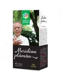 Meridian Plaman tinctura 100 ml Steaua Divina, Meridian Plaman tinctura 100 ml Steaua Divina Rol protector asupra plamanilor