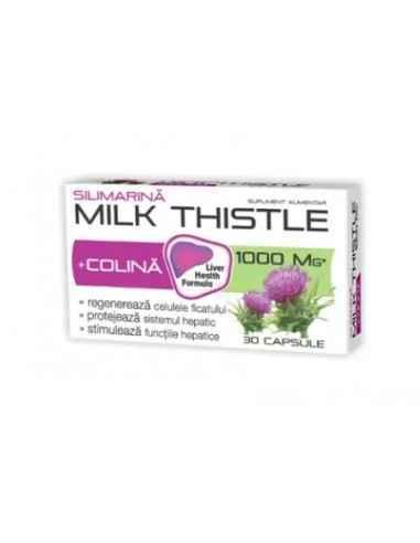 MILK THISTLE + COLINA 30CPS Zdrovit Milk Thistle este recomandat pentru sustinerea functiei hepatice, inclusiv in perioadele de